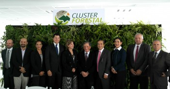 cluster_forestal_1