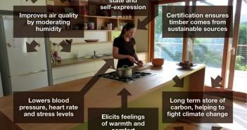 La madera promueve la salud y el bienestar mental